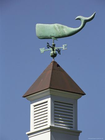 A Sperm Whale Weather Vane on a Roof Top