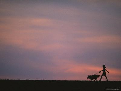 A Girl with Her Sheltie Silhouetted against a Pink Sky