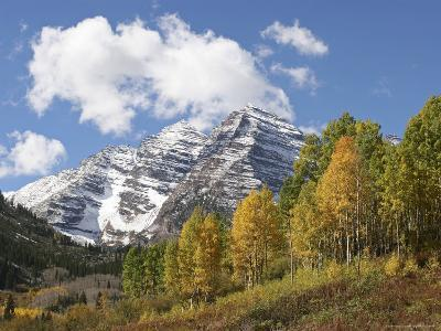 The Majestic Maroon Bells are Surrounded by Aspen and Evergreen Trees