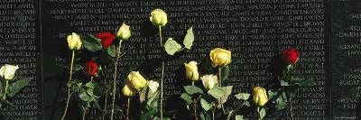 Roses are Left at the Vietnam Veterans Memorial