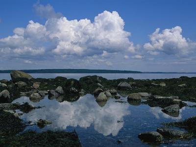 A Tidal Pool Reflects the Stark Beauty of Maines Rocky Coast