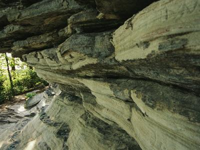 Quartzite, Metamorphosed Sandstone, at Base of Pilot Mountain