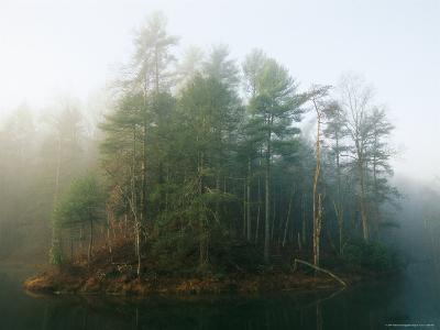 Early Morning Fog in the Trees Around Otter Lake