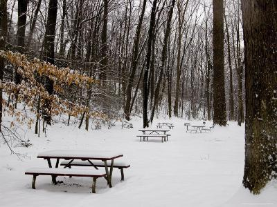 Picnic Tables in a Park after a Snow Fall
