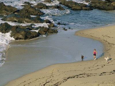 A Woman and Her Two Labrador Retrievers Run Along a Rocky Shoreline