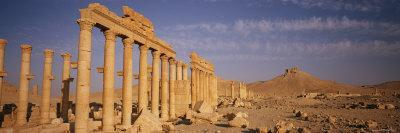 A View of the Ruins of the Palmyra Great Colonnade