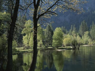 Scenic View of the Merced River in Spring
