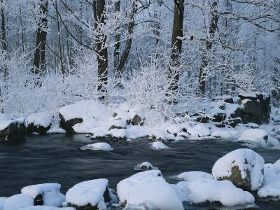 A Stream Running Through Snowy Woodland