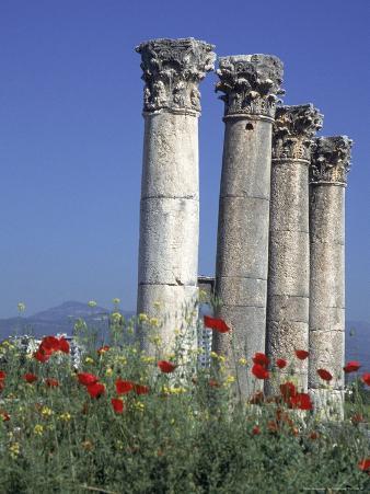Poppies and Corinthian Columns, Mersin, Turkey
