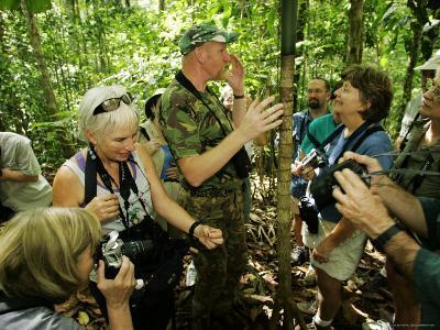 Rainforest Naturalist Teaching Tourists About the Rainforest, Costa Rica