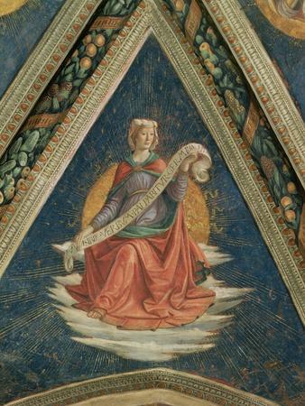 Sibyl, 1483-86