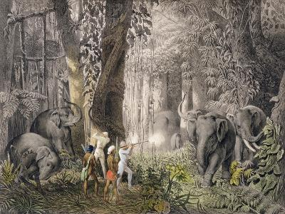 Elephant Hunt in Logalla, c.1859