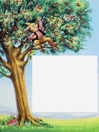 Brer Rabbit in Cherry Tree