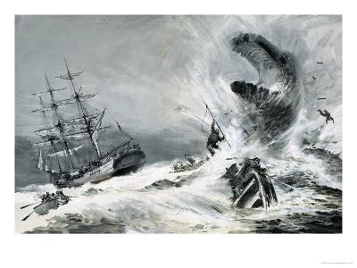 Was There Really a Mysterious Monster Terrorising the World's Oceans