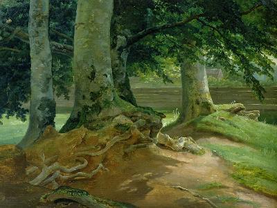 Beech Trees in Frederiksdal Near Copenhagen, 1828