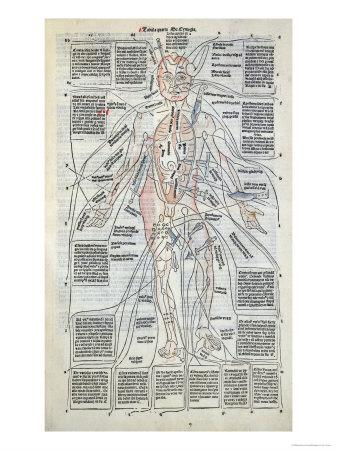 Surgical Diagram of the Anatomy of Man, from Fasciculus Medicinae by Johannes de Ketham
