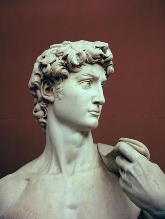 David, 1501-04