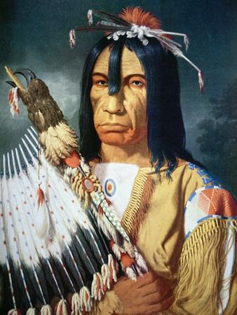 Native American Chief of the Cree People of Canada, 1848