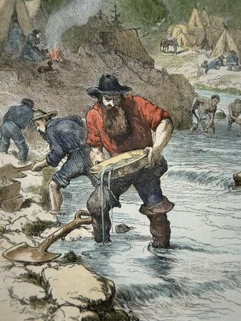 Prospectors Panning For Gold During the Californian Gold Rush of 1849