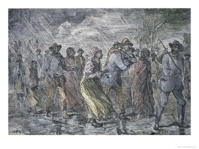 Fugitive Slaves Fleeing from the Maryland Coast to an Underground Railroad Depot in Delaware, 1850