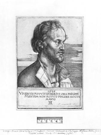 Portrait of Philipp Melanchthon, 1526