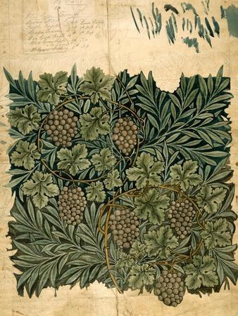 Design For Vine Wallpaper, c.1872