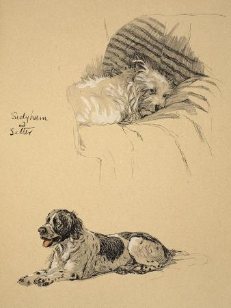 Sealyham and Setter, 1930, Just Among Friends, Aldin, Cecil Charles Windsor
