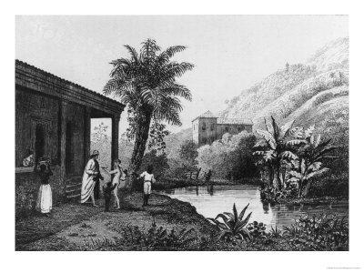Coffee Plantation, from Bresil, Columbie et Guyanes by Ferdinand Denis and Cesar Famin 1837