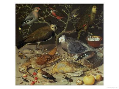 Still Life of Birds and Insects, 1637