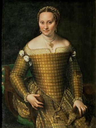 Portrait of the Artist's Mother, Bianca Ponzoni Anguisciola, 1557