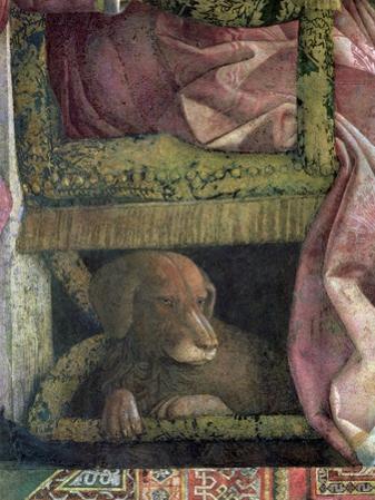Rubino, Favourite Dog of Marchese Ludovico Gonzaga III of Mantua, Camera Picta, 1465-74