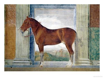 Sala Dei Cavalli, Chestnut Horse from the Stables of Ludovico Gonzaga III of Mantua, 1528