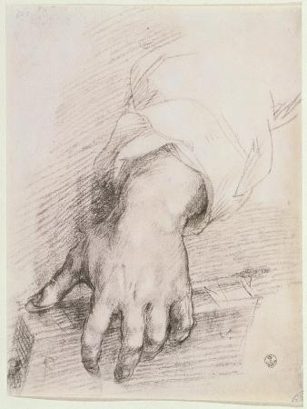 Study of a Hand For the Madonna of the Harp