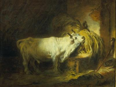 The White Bull in the Stable