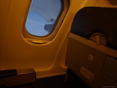 A Small Window Next to an Airplane Seat