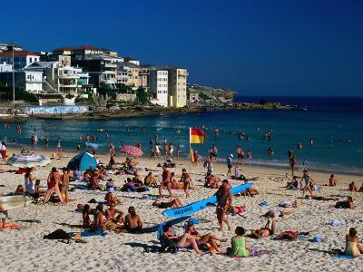 Sunbathers at North Bondi on a Summer Afternoon, Sydney, New South Wales, Australia