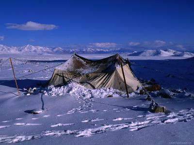Nomadic Yak Herder's Tent in Snow on Tibetan Plateau, Langtang Himal, Tibet