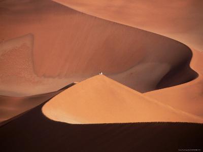 People on Sand Dunes, Sossusvlei, Namibia