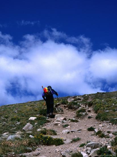 Climber Heading To The Summit Of Mt Elbert Colorado Usa