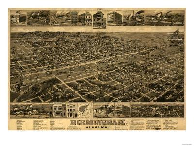 Birmingham, Alabama - Panoramic Map