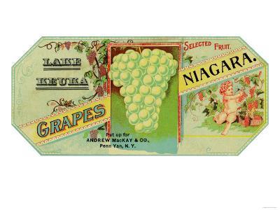 Penn Yan, New York - Lake Keuka Niagara Grapes Label, Laureled Child in Grapes