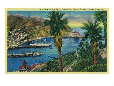 Avalon Bay, Santa Catalina Island from Skyline Drive - Santa Catalina, CA