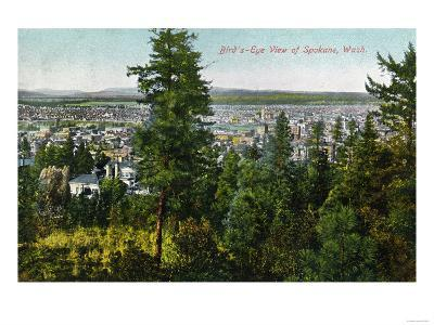 Spokane, Washington - Aerial View of City through the Woods