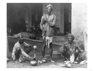 Snake Charmers in India Photograph - India
