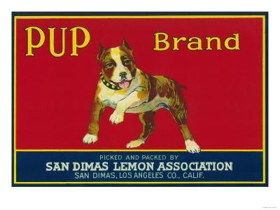 Pup Lemon Label - San Dimas, CA