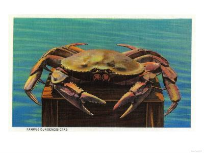 Dungeness Crab on Hood Canal - Hood Canal, WA