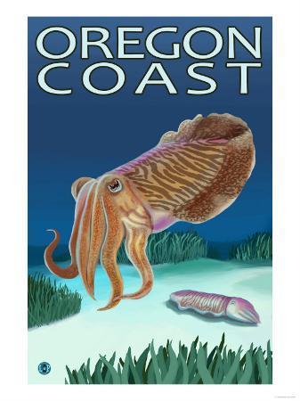 Oregon Coast Cuttlefish