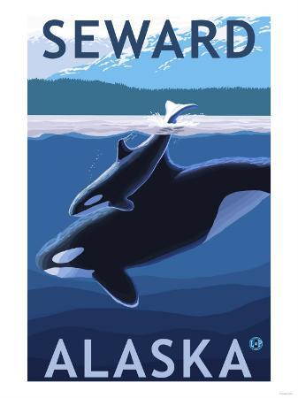 Seward, Alaska - Orca and Calf Scene