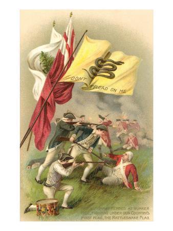 Don't Tread on Me Flag, Battle Scene