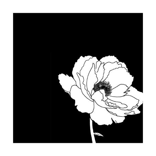 Black and white print with large white flower prints at allposters black and white print with large white flower mightylinksfo